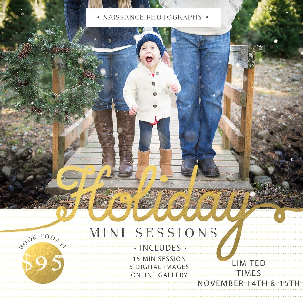seattle mini session holiday