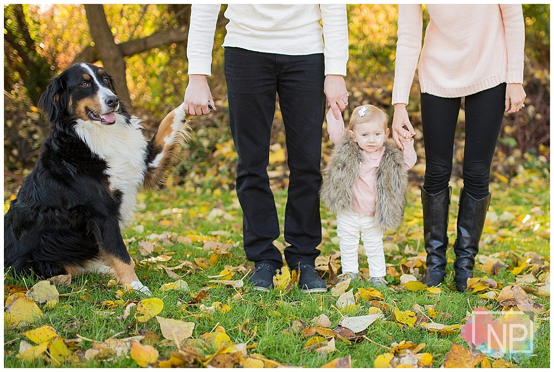 montlake family photographer