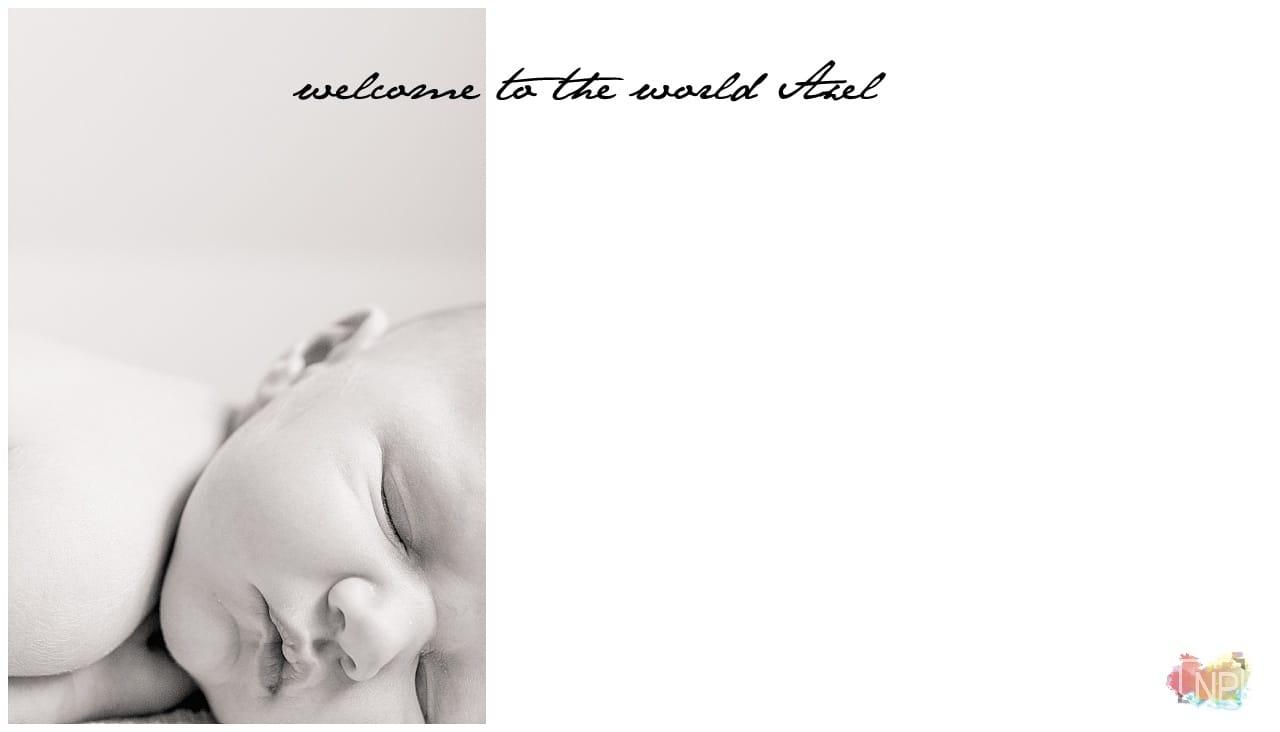 kirkland seattle bellevue newborn photographer